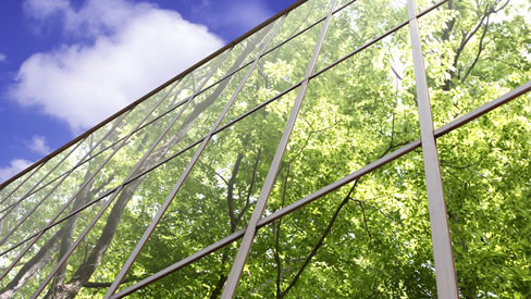 Trees reflected in a building, representing small business growth with SAP software